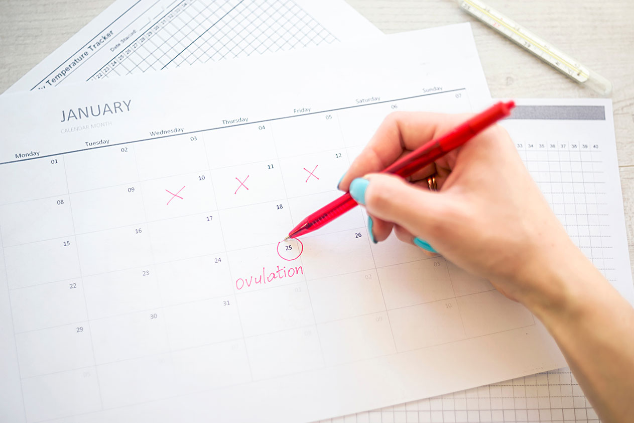 How To Track Ovulation Date