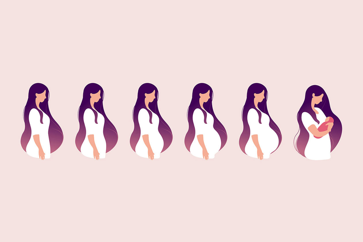 What Are The Stages Of Pregnancy?